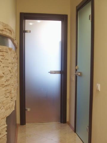 стеклянные двери европан Vetro белла коза купить в минске фото
